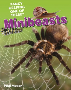 Minibeasts- Instruction Text